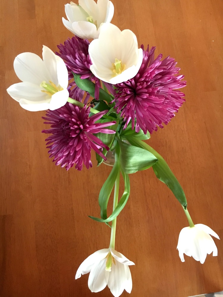 trader-joes-tulips
